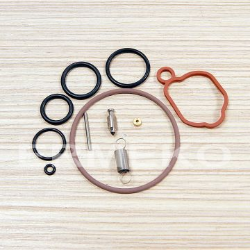 Kit reparatie carburator - BRIGGS & STRATTON - 590589