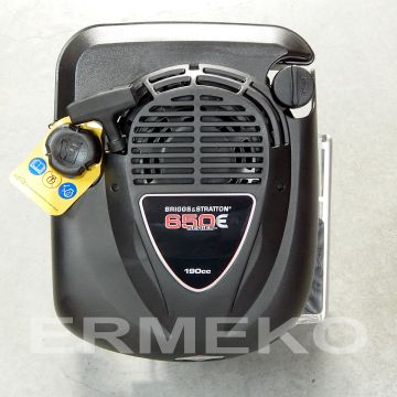 Motor BRIGGS & STRATTON 6CP - 190cc - cu ax vertical, conic - ER-B&S-6CP-190CC-124T02-0013-H1